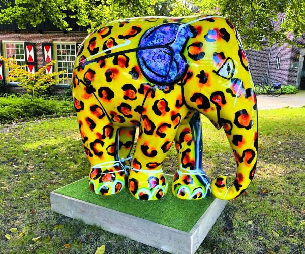 Elephant Parade Losser: Olifant 'Jan' Spot jij alle kleurrijke olifanten tijdens de Elephant Parade?