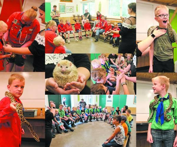 Reptielenworkshop bij Scouting Teylersgroep  Tijdens laatste opkomst voor zomervakantie