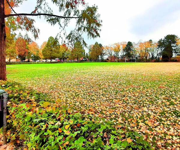 Oude TAR veld en omgeving wordt opgeknapt. Nieuw ommetje voor de buurt